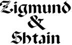 Техника Zigmund & Shtain в нашем ассортименте